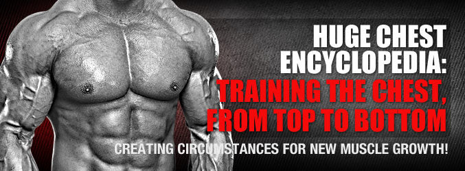 HUGE Chest Encyclopedia: Training the Chest, From Top to Bottom