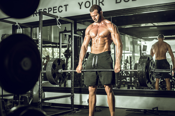 Six Tips To Explosive New Pectoral Growth