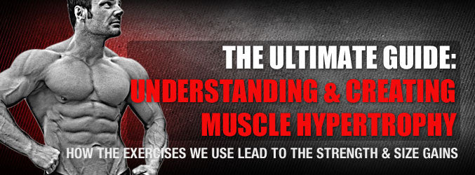 The Ultimate Guide: Understanding & Creating Muscle Hypertrophy