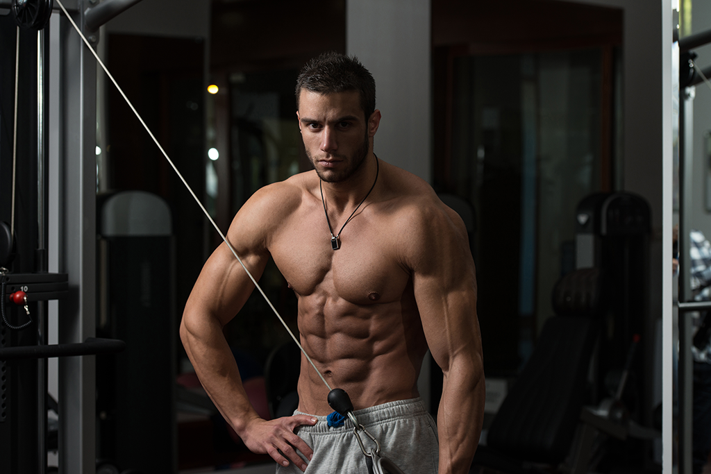 Are Traps Best Trained With Back Or Shoulders? BOTH! - Primal Muscle
