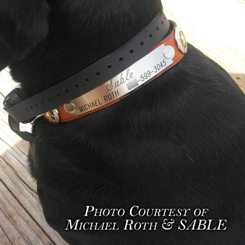 Engraved DOG COLLAR NAME PLATE XLARGE starting at