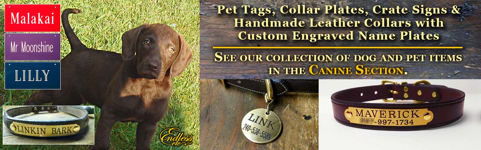 engraved collar and pet tags