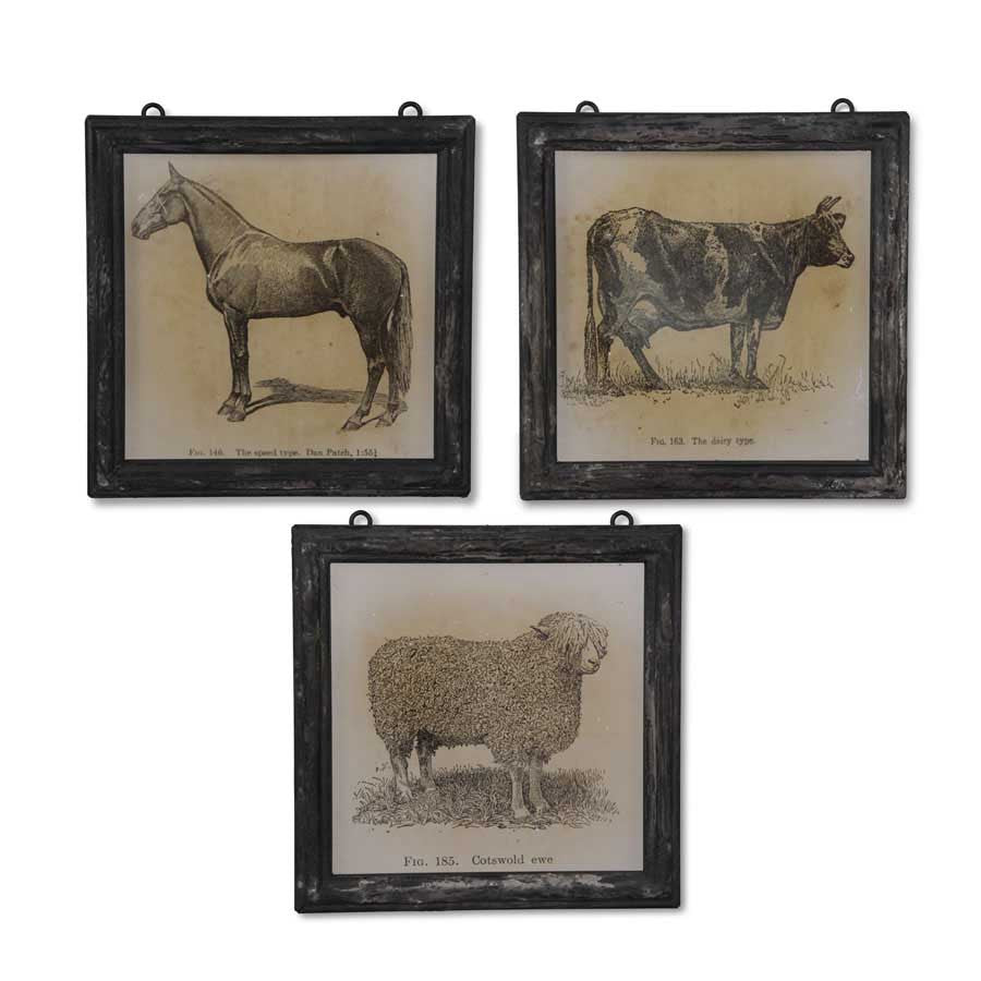 Square Animal Prints - E.T. Tobey Company