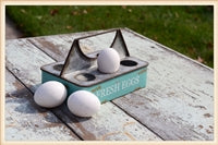 Metal Egg Tray