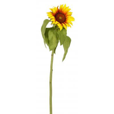 Sunflower - E.T. Tobey Company