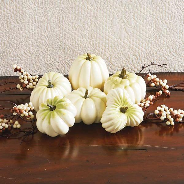 White Mini-Pumpkins