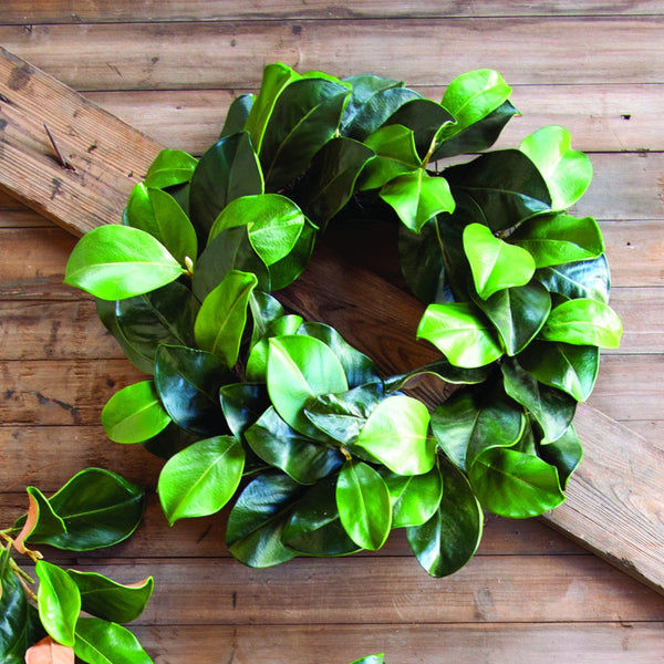 "Plantation Magnolia Wreath 24"" - E.T. Tobey Company"