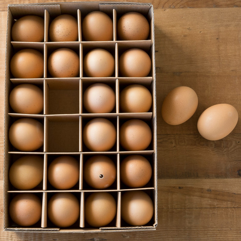 farm eggs - e.t. tobey