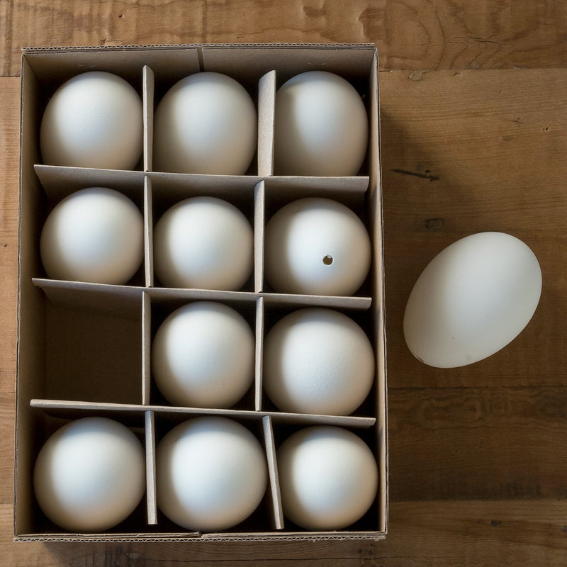 Real Eggs