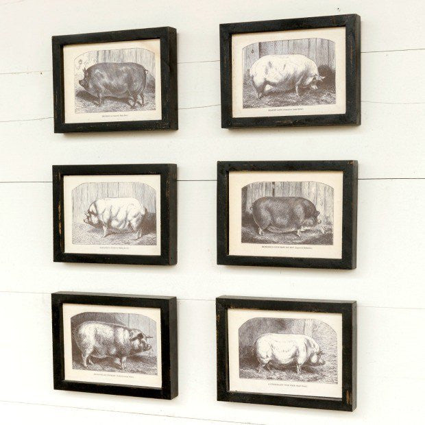 Collected Pig prints - e.t. tobey company - farmhouse style