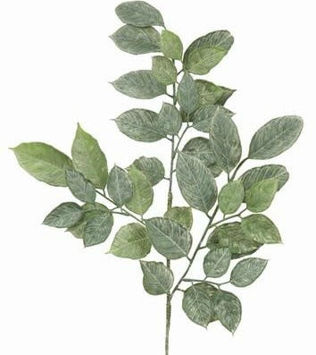 Lemon Foliage Spray
