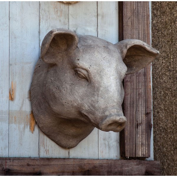 Pig Head Wall Mount
