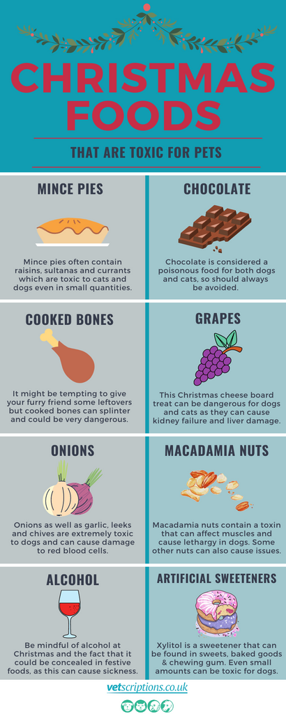 Christmas foods that are toxic for pets