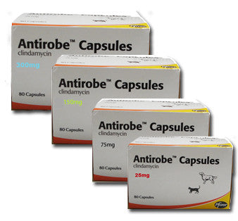 Antirobe capsules (Prescription Required)