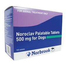 Noroclav Tablets (Prescription Required)