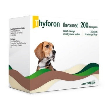 Thyforon Flavour Tablets (Prescription Required)