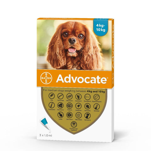 Advocate for Dogs - Flea treatment