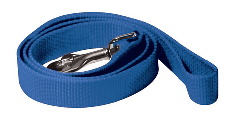 Canac Blue Nylon Lead