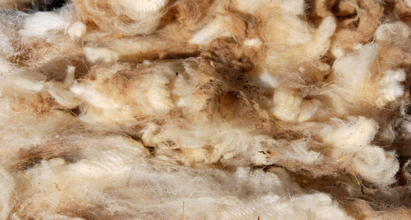 How it's made: Felted Wool