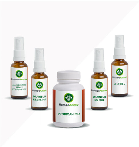 ALLERGIES AUX ARBRES (POLLENANIMO) - KIT OPTIMAL
