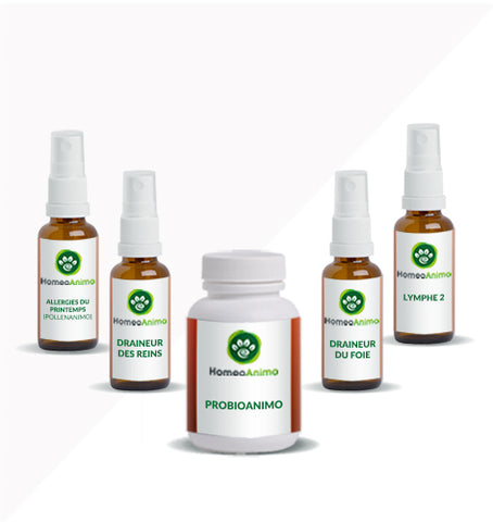 ALLERGIES DU PRINTEMPS (POLLENANIMO) - KIT OPTIMAL