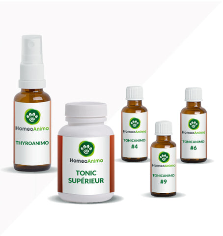 THYROANIMO - KIT OPTIMAL