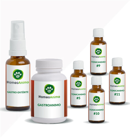 GASTRO-ENTÉRITE - KIT OPTIMAL