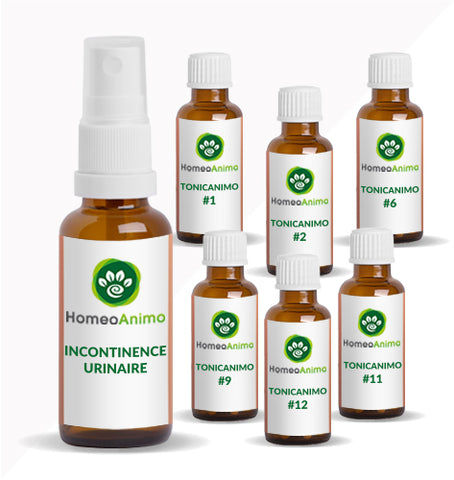 INCONTINENCE URINAIRE - KIT OPTIMAL