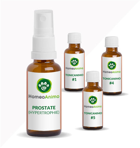 PROSTATE (HYPERTROPHIE) - KIT OPTIMAL