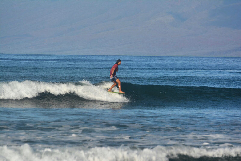 SURF LESSONS and SURFARI EXCURSIONS