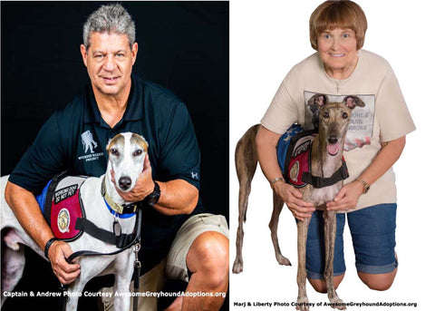 Veterans and greyhound service dogs