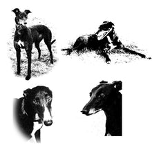 Load image into Gallery viewer, Greyhound Note Card Set