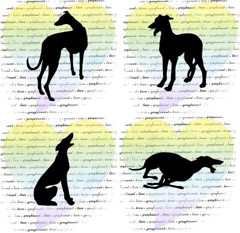 Greyhound Note Card Set