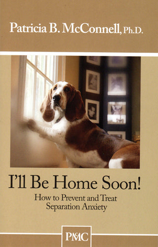 I'll Be Home Soon Book