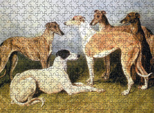 Load image into Gallery viewer, Greyhound Jigsaw Puzzle