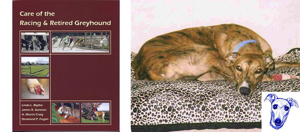 Greyhound Care Book