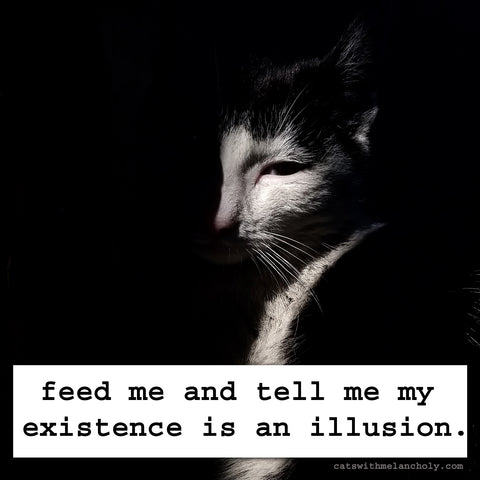 feed me and tell me my existence is an illusion