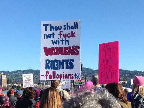 Oakland CA Womens March Protest Sign - Thou Shall Not Fuck With Womens Rights - Photo By eclipse_etc