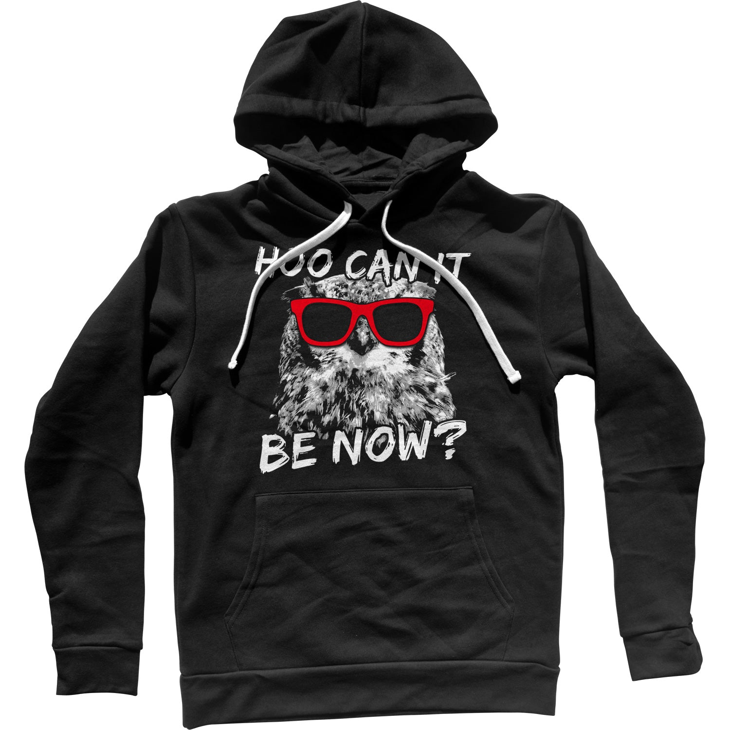 Hoo Can It Be Now Funny Owl Unisex Hoodie