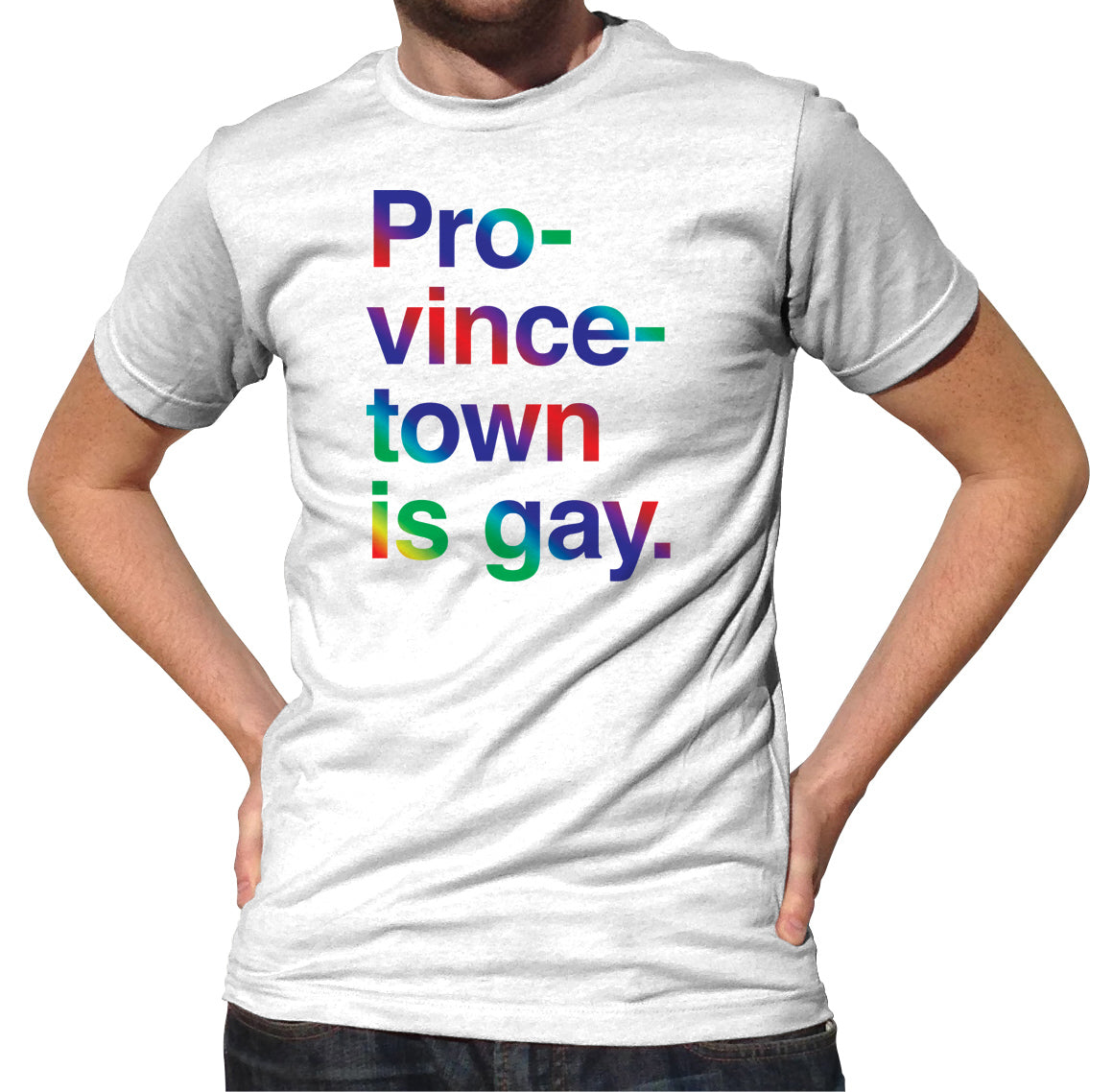 Men's Provincetown is Gay T-Shirt