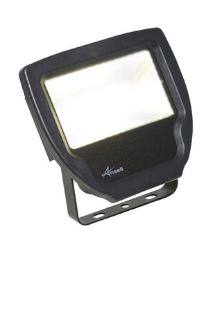 Ansell ACALED20 20W LED Exterior Floodlight