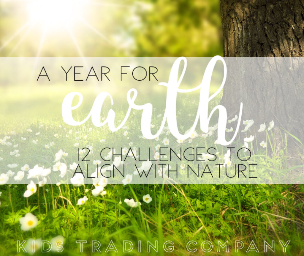 A Year for Earth - 12 Challenges to Align with Nature