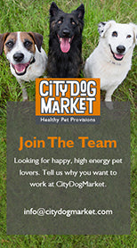 City Dog Market Join Our Team
