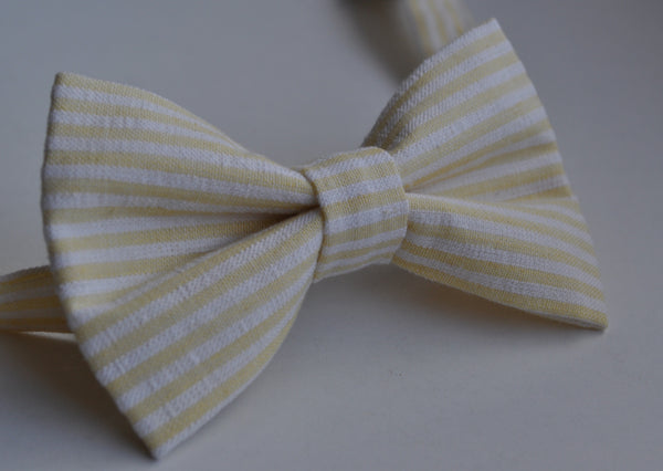 Yellow & White Striped Seersucker Bow Tie - Dapper Guy Bow Ties - 2
