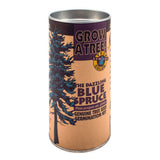 Channel Craft Tree Grow Kit- Many Different Trees and Plants Available! - YoYoSam