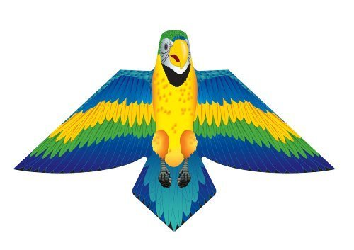 XKites Birds of Feather - 54 inch Kite