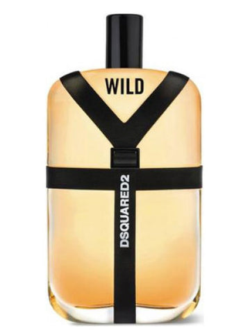 Wild by Dsquared for men