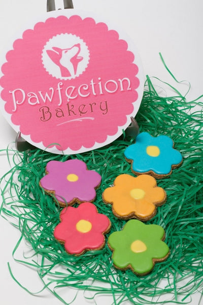 Spring Flower - Locabuy - PAWFECTION BAKERY - 3