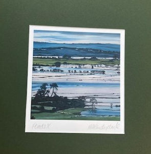 Mary Vanderplank Somerset Levels Floods X print