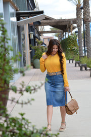 Ida Denim Distressed Skirt